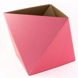 octa-storage-box-fluorescent-pink (1)