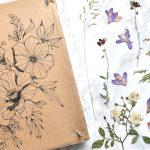 Faire un presse-fleurs avec du carton