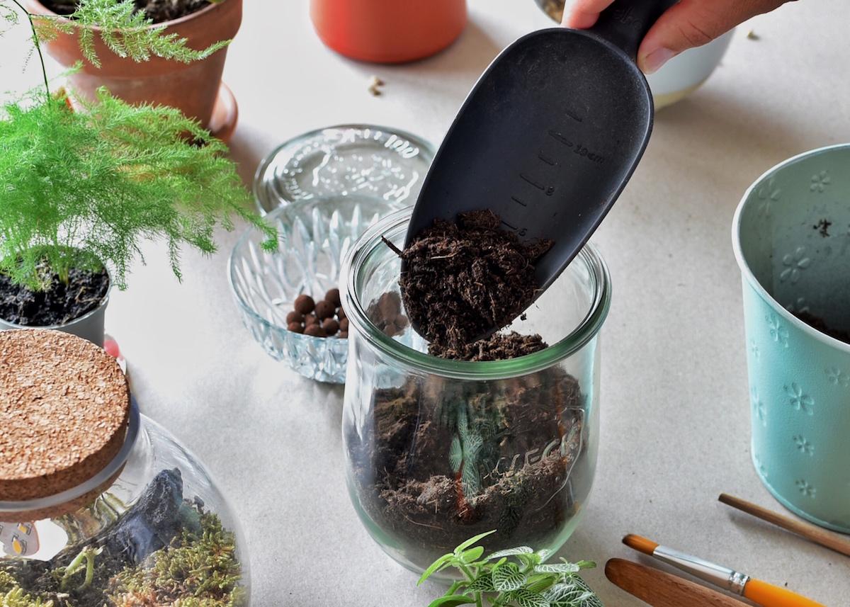 faire un terrarium dans un bocal en verre fermé
