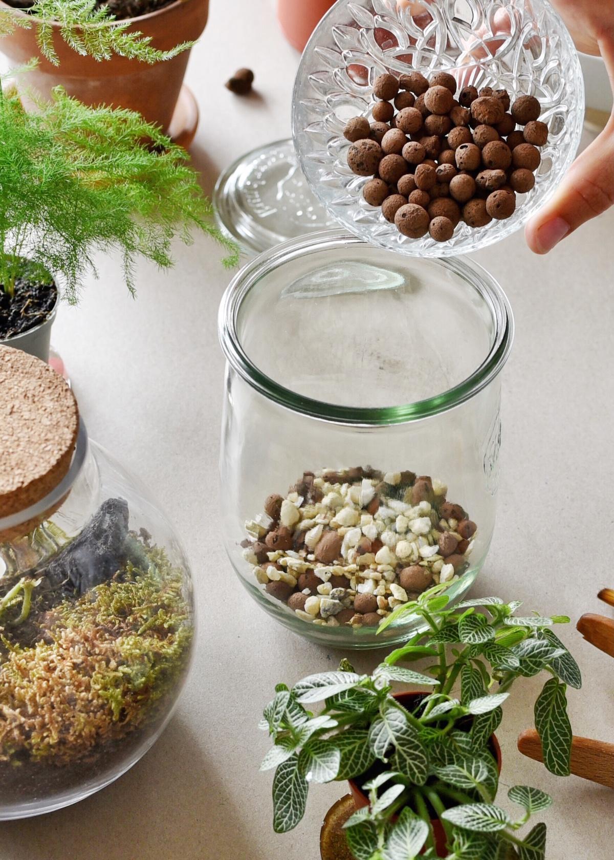 mettre les billes d'argile pour faire un terrarium
